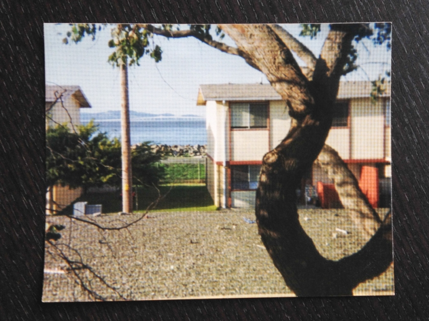 View from my room. 1993.